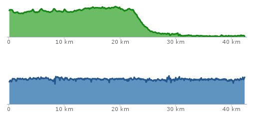 Charts: elevation change (top) and speed (Image Credit: Runkeeper)