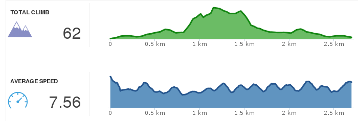 RunKeeper chart: elevation and speed, July 31, 2013